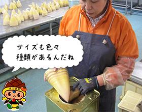 8.選別~肉詰め